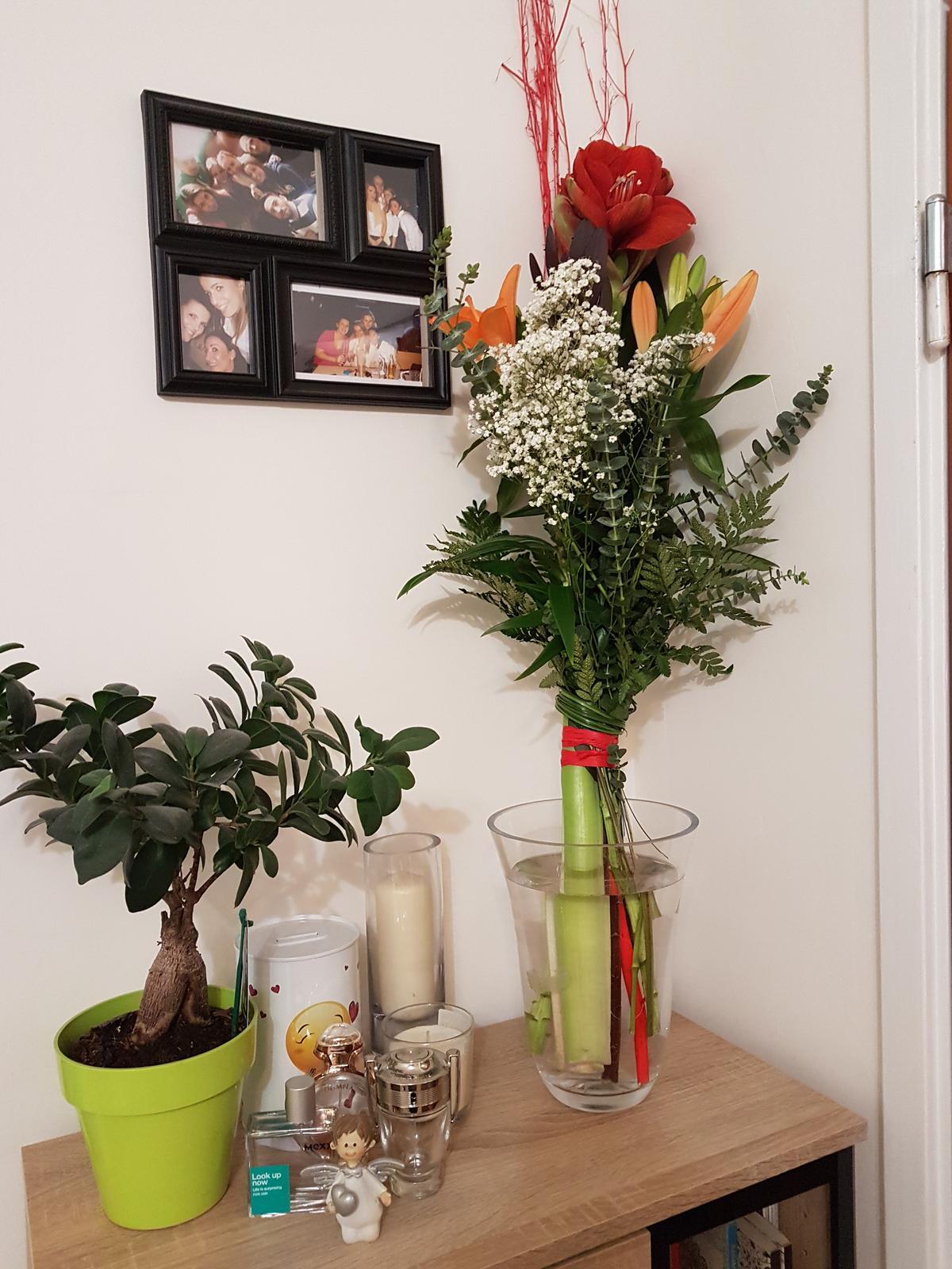 ked ten co Vas miluje vie, ake kvety mate najradsej ❤ - Obrázok č. 1