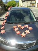 Růžová květin.výzdoba na auto,