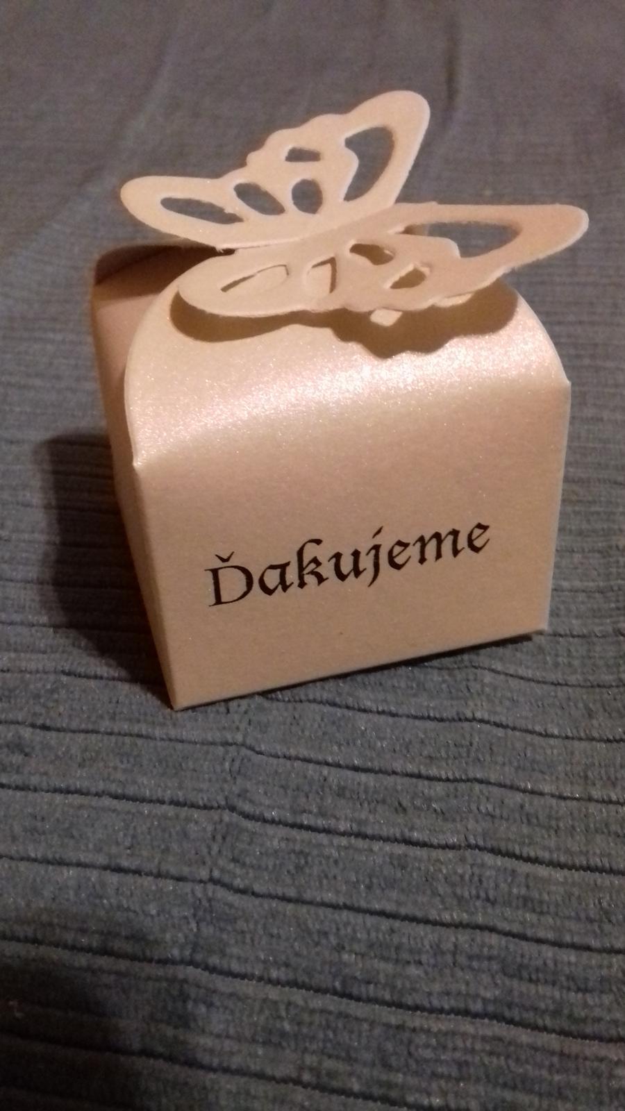 Krabičky - menovky + darčeky pre hostí - Obrázok č. 1