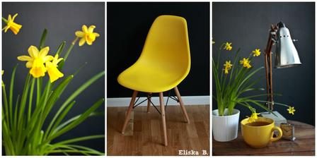 První jarní den .. Žlutý