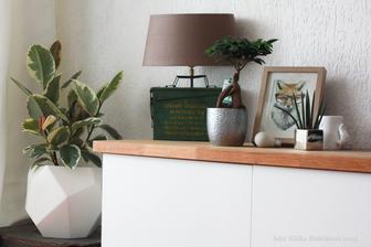 Koutek v obýváku s novým květináčem a ficusem