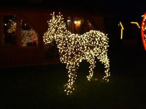 koník aj svieti - hoho
