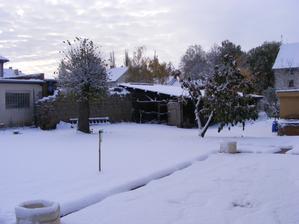 První letošní sníh, stromy mají ještě i listy, ale všude je bílo