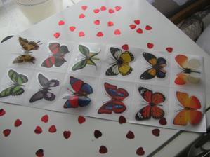 Naše výzdoba - motýlci a srdíčkové konfety