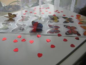 Motýlci jsou 3D :-)