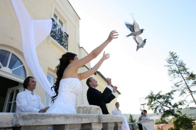 Daniela{{_AND_}}Roman - vypúšťanie holúbkov