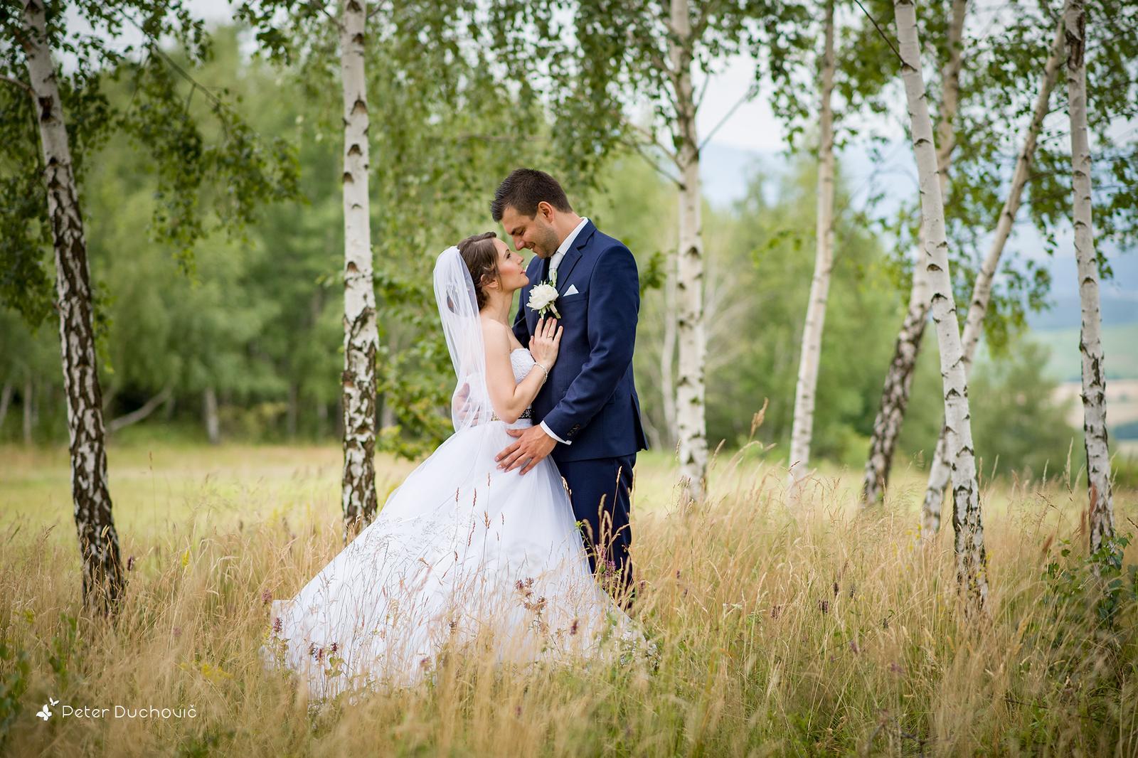 Svadba Bea a Andrej - Obrázok č. 2