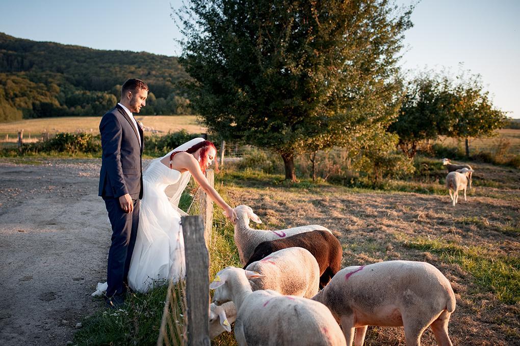 Svadba Michaela a Boris - Obrázok č. 10