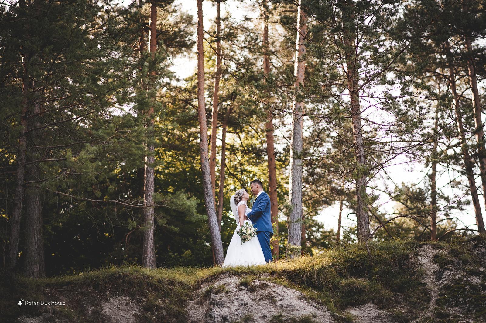 Svadba Vlado a Veronika - Obrázok č. 3