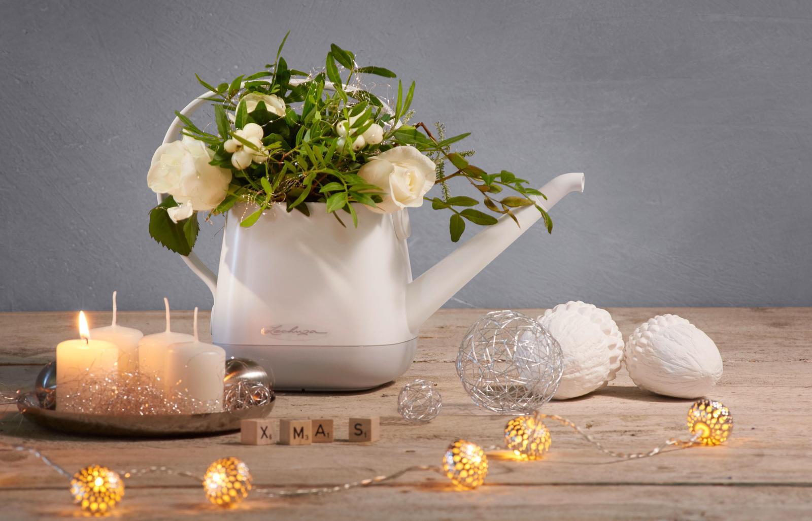 Pripravujeme nový kvetináč Yula | LECHUZA - konvička 22 x 30 x 14 cm | 9,99 €