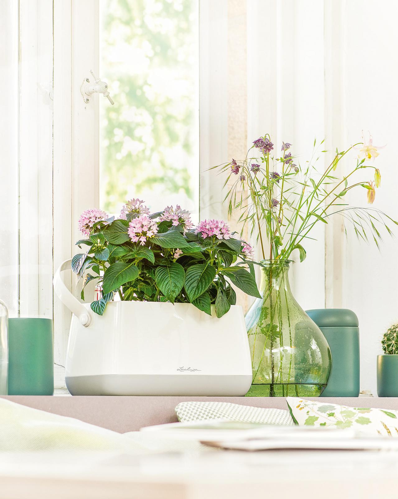 Pripravujeme nový kvetináč Yula | LECHUZA - kvetináč 33 x 37 x 17 cm | 19,99 €
