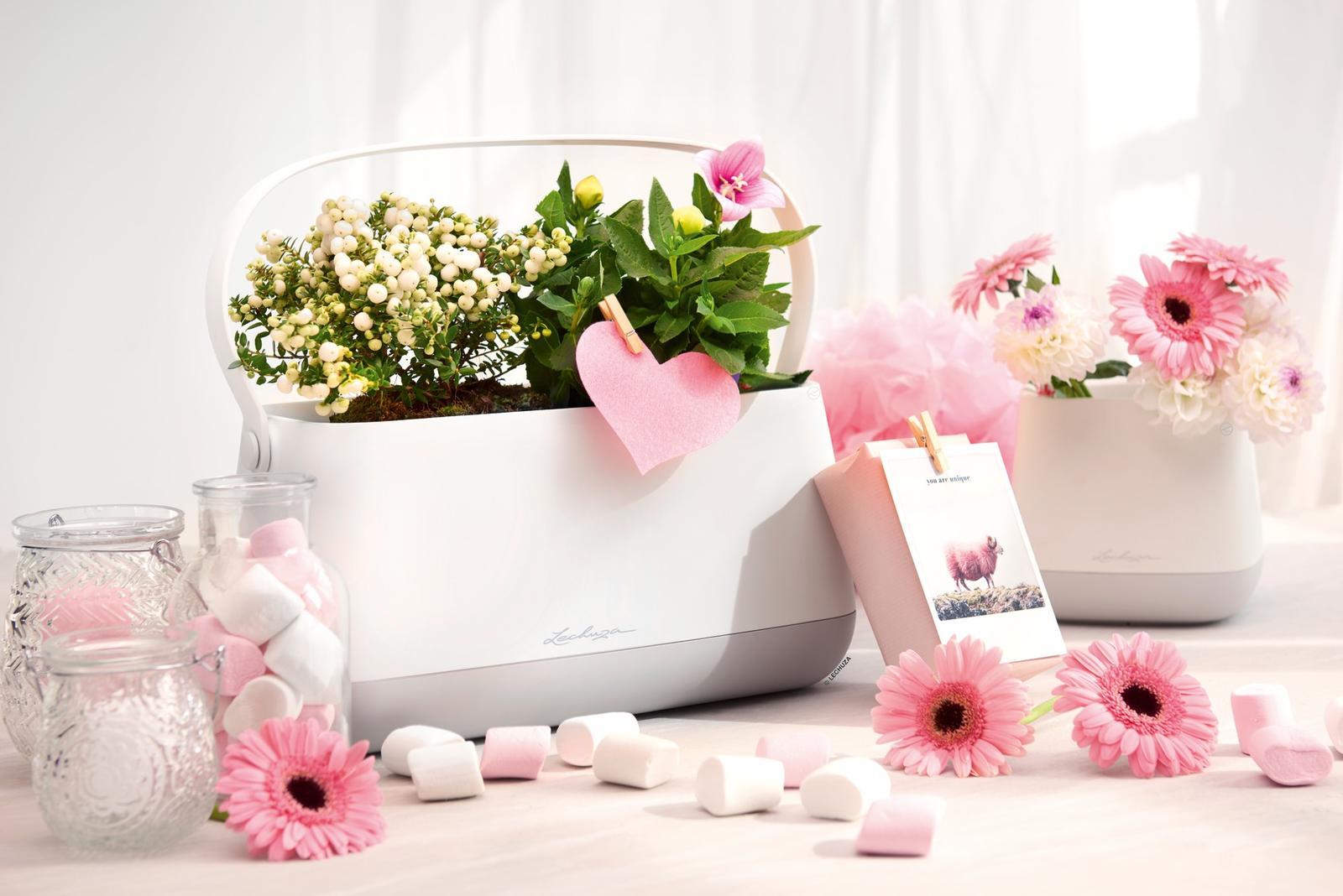 Pripravujeme nový kvetináč Yula | LECHUZA - Obrázok č. 19