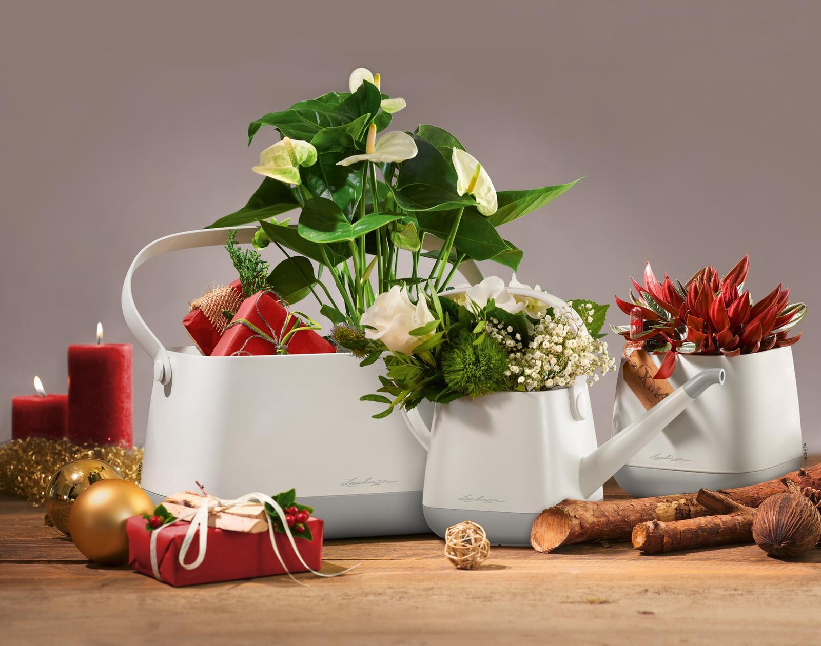 Pripravujeme nový kvetináč Yula | LECHUZA - Obrázok č. 20