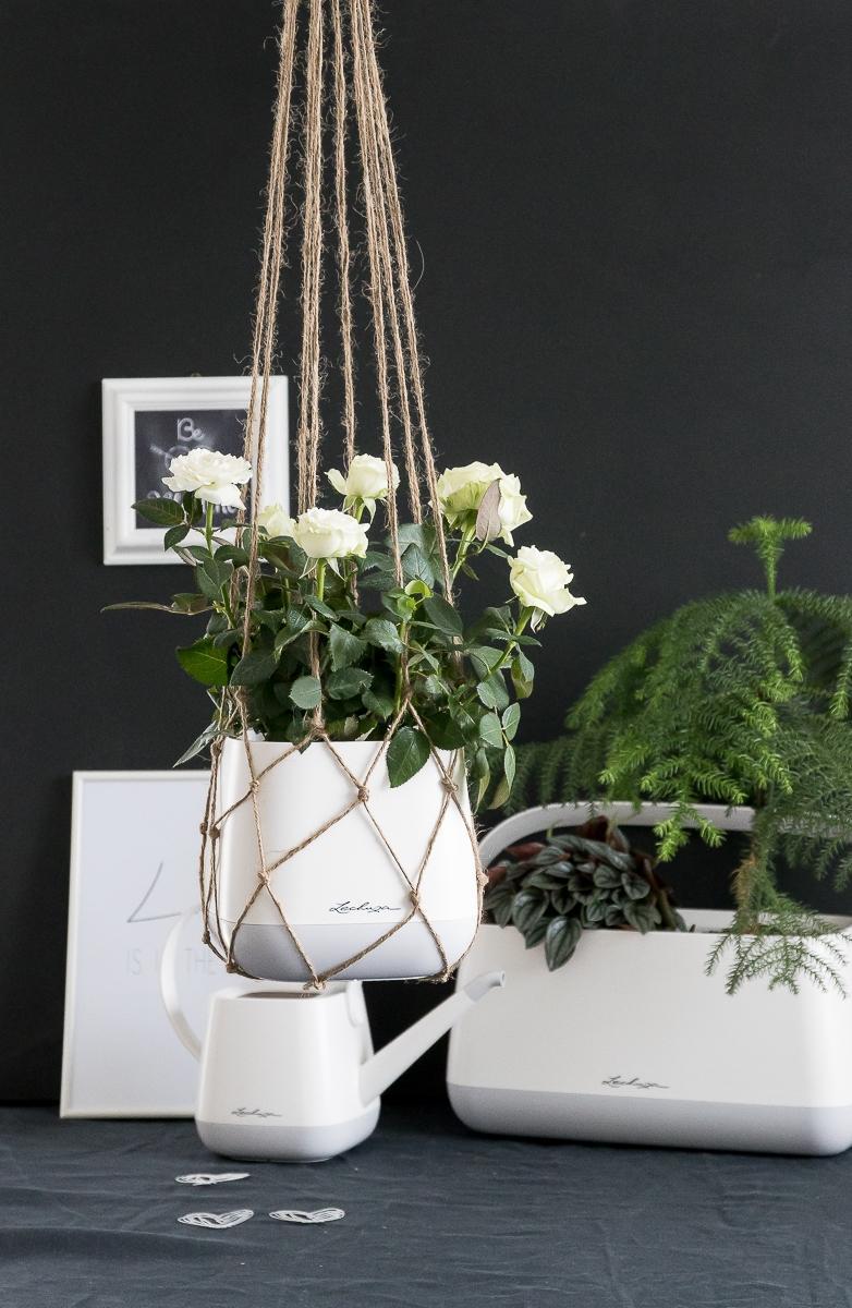 Pripravujeme nový kvetináč Yula | LECHUZA - Obrázok č. 29