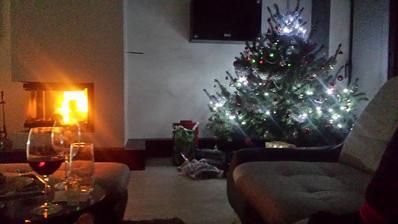 Stastne a vesele vianoce prajeme kazdym stavbarom....