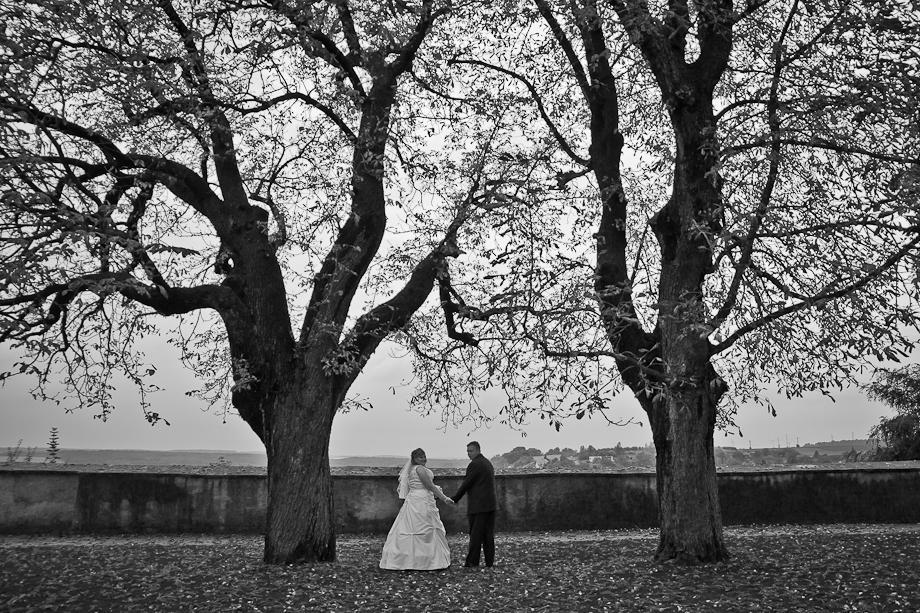 Svatba Zámek Benátky nad Jizerou - Obrázek č. 20
