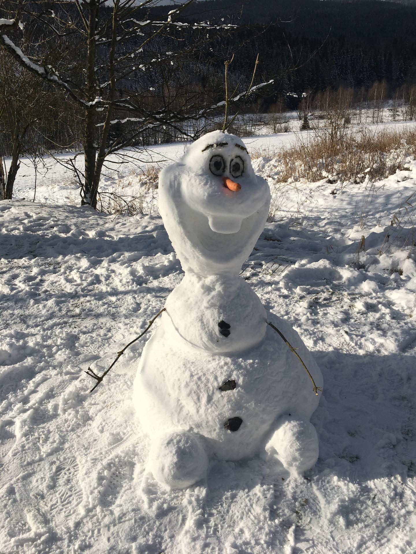 Vzpomínka na silvestra ... s bráchou a jeho polovičkou jsme stavěli Olafa v Železný Rudě #olafvrude třeba jste ho potkali 😊 - Obrázek č. 1