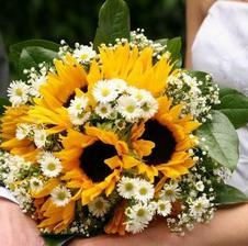 jednoznačne slnečnice alebo iné výrazne žlté kvety
