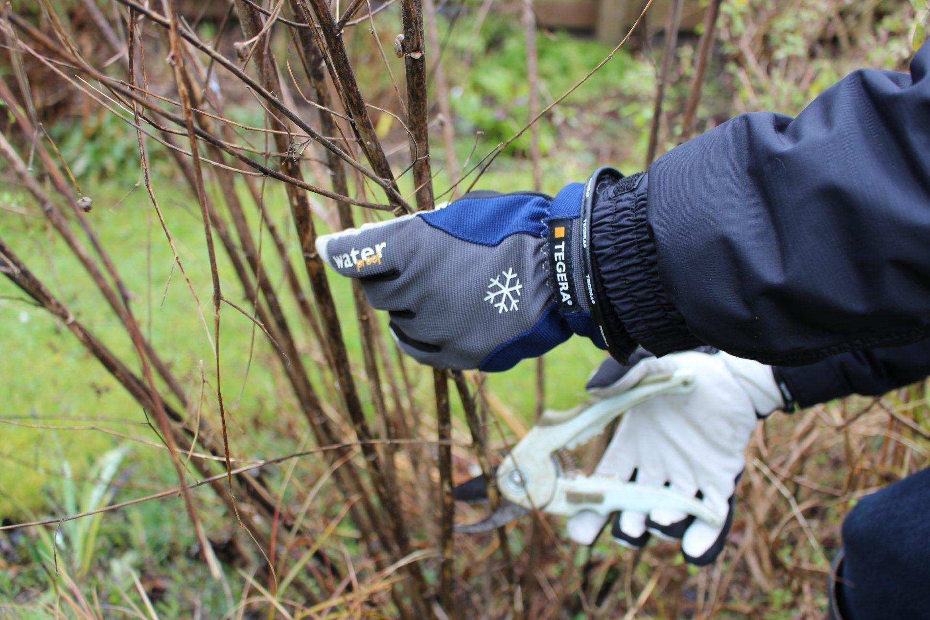 Tegera rukavice do záhrady - Zimné kožené rukavice Tegera® 292, vodeodolné.