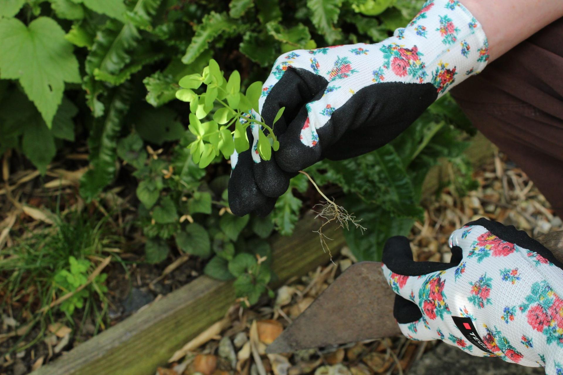 Jarné vzory na kolekcií TEGERA® Tällberg 🌹🌷  Pracovné rukavice s hravými kvetinovými vzormi pre všetky záhradníčky, pestovateľky a ďalšie ženy, ktoré sa neboja poriadnej práce. Aktuálnych 7 modelov nájdete na: www.tegera.sk/kategoria/kolekcia-tallberg - Obrázok č. 2