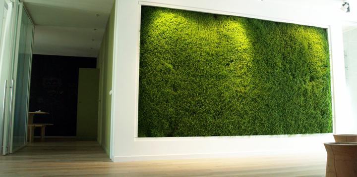 Niečo zelené - Obrázok č. 16