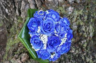 Kytička (ruže boli živé)