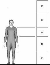Popis zón: A - medzi pásom a ramenami, tam veci ukladáme najčastejšie; B - medzi pásom a kolenami, tam veci ukladáme následne; C - Ešte menej používaná zóna na ukladania vecí a D - Veľmi zriedkavo používaná zóna, a to s pomocou stoličky či rebríka