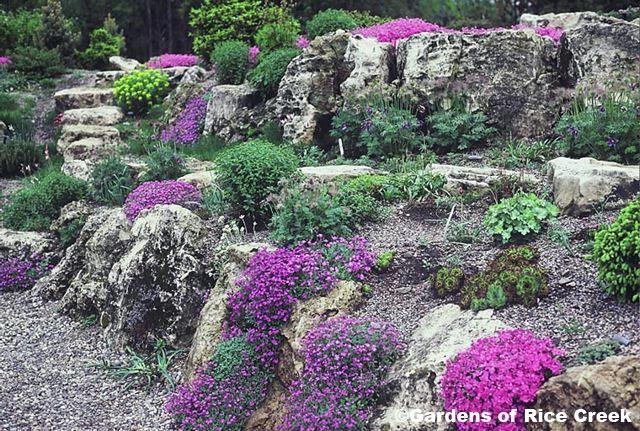 Skaly skalky skalni ky album u vate a ruthy foto 20 for 20 fabulous rock garden design ideas