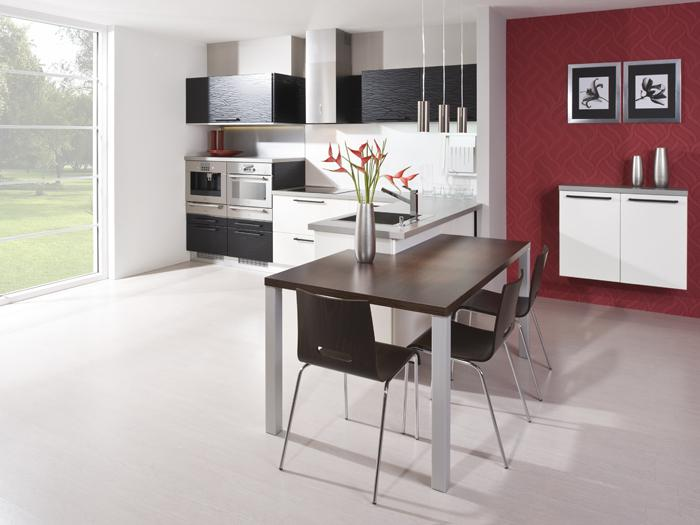 Čierne a biele kuchyne - Kuchyňa 13