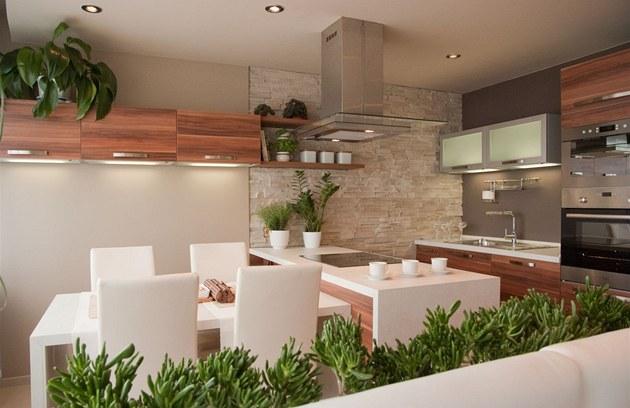 Kuchyně - Obrázek č. 50