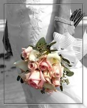 krásny tvar ruží