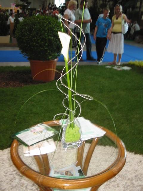 D@J - krasny kvet na svadobny stol