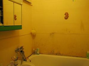 bude zde sprchový kout a možná se vejde konečně i pračka