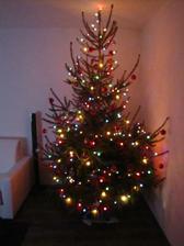 už i k nám v noci přinesl Ježíšek stromeček-přejeme všem krásné vánoce