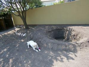 toto je moje jazierko pri jeho tvorbe.. sama som kopala :)