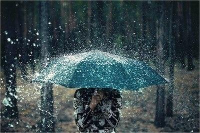 Prší, prší jen se leje, fotky budou stejně skvělé... - Obrázek č. 25