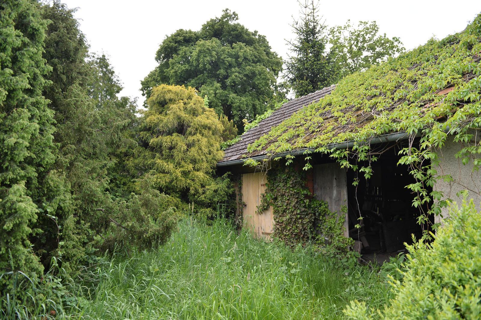 ..our rustic cottage.. - ..naše džungle :-D