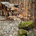 Předzahrádka se z jara trochu doladila, přibil další stromek a kameny s mechem.