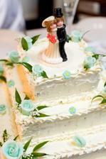 náš výborný a krásný dortík