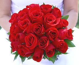 určitě budou červený růže