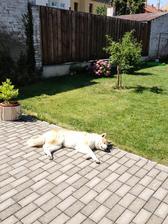 letni horko na terase