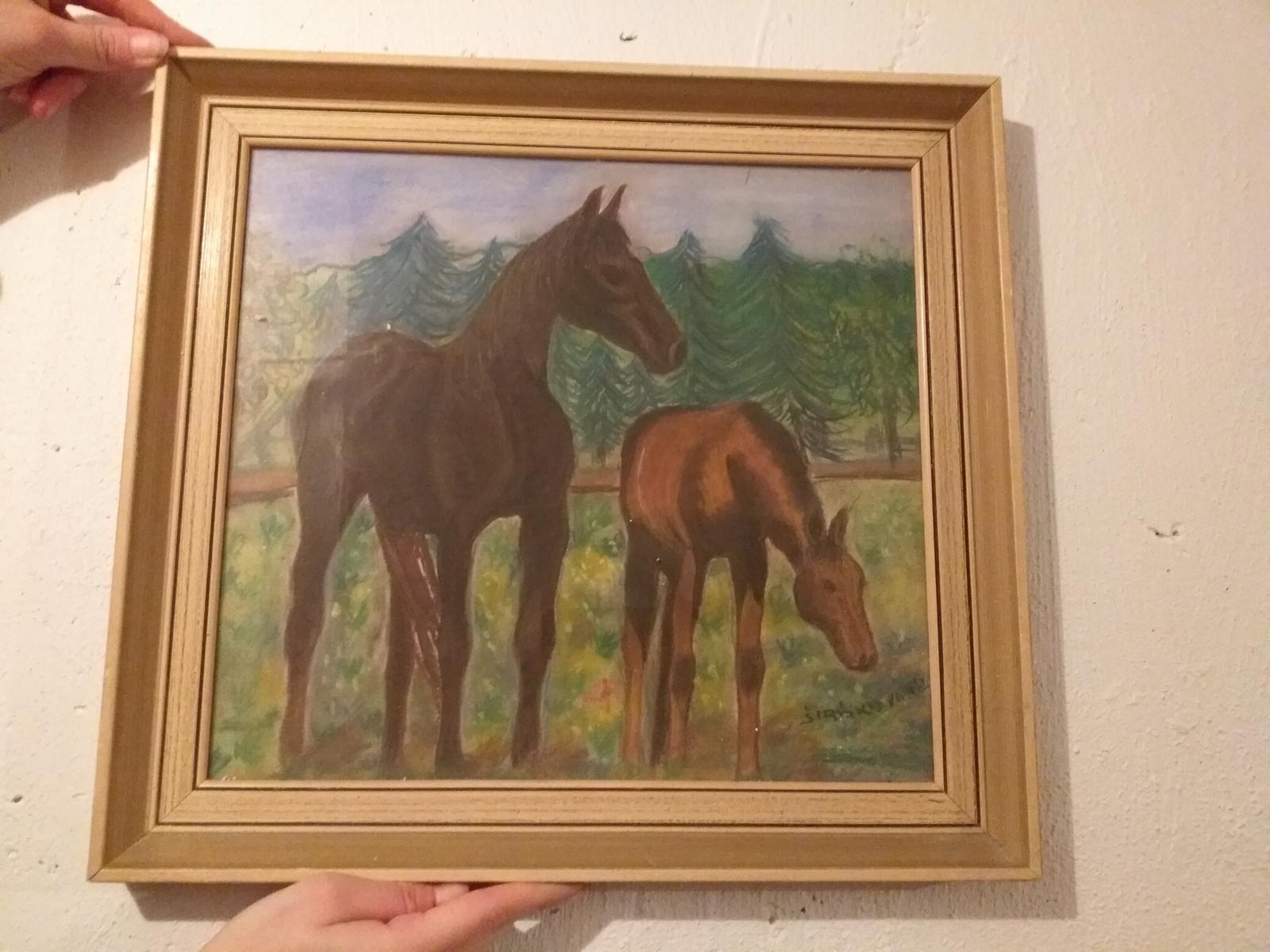 obraz kone - Obrázok č. 1