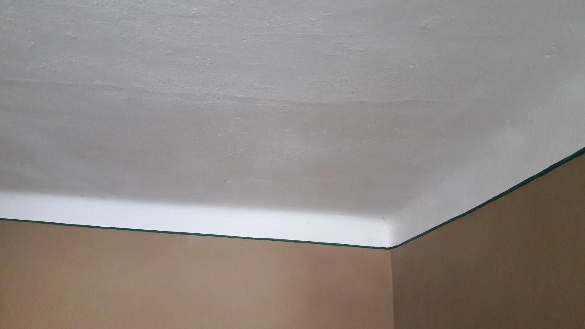Hlinená chalupa a jej premeny - part 5 Jemné hlinené omietky a sgrafito - Zelená linka oddeľuje strop od omietky