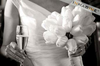 ...tulipány....