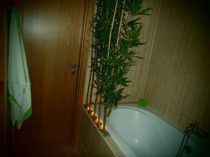 splnil sa mi sen, bambus dorazil den pred vianocami :-D sme komplet