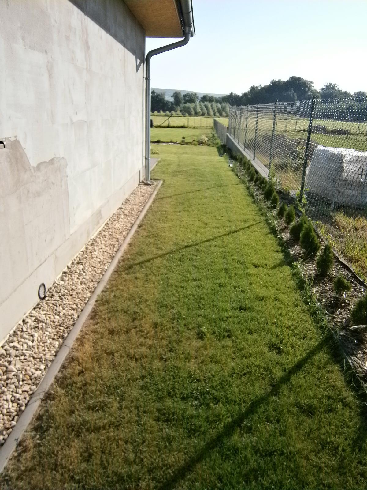 Zahrada a předzahrádka - z pravé strany miny thujky