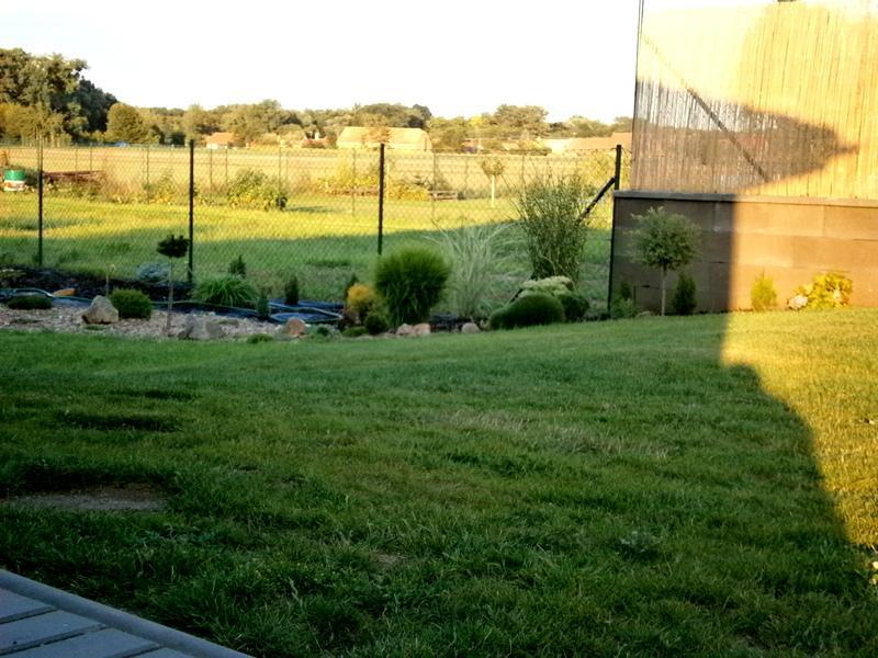Zahrada a předzahrádka - ještě ve výstavbě zahrada
