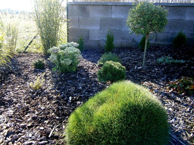 Zahrada a předzahrádka - Obrázek č. 52