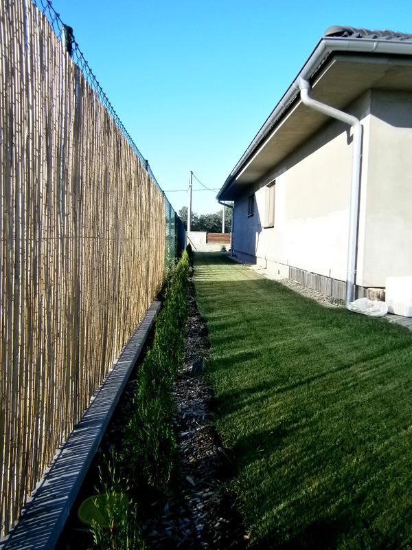 Zahrada a předzahrádka - plevel od sousedů se nedal vydržet tak jsem koupila rákos ;-)