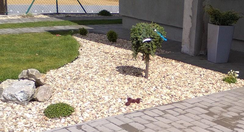 Zahrada a předzahrádka - Obrázek č. 86